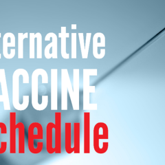 Our Alternative Vaccination Schedule and Why We Chose It.